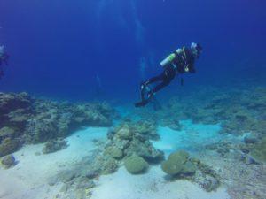 plongeur autonome