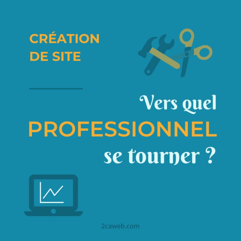 Création de site : vers quel type de professionnel se tourner ?